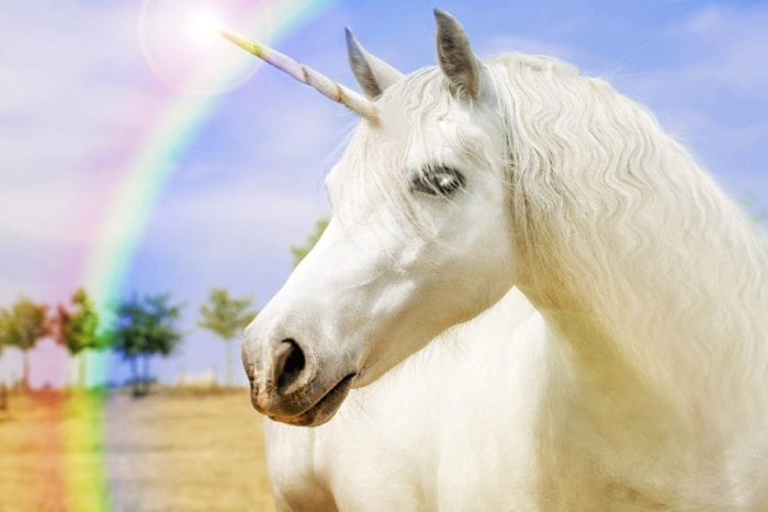 a unicorn with a rainbow