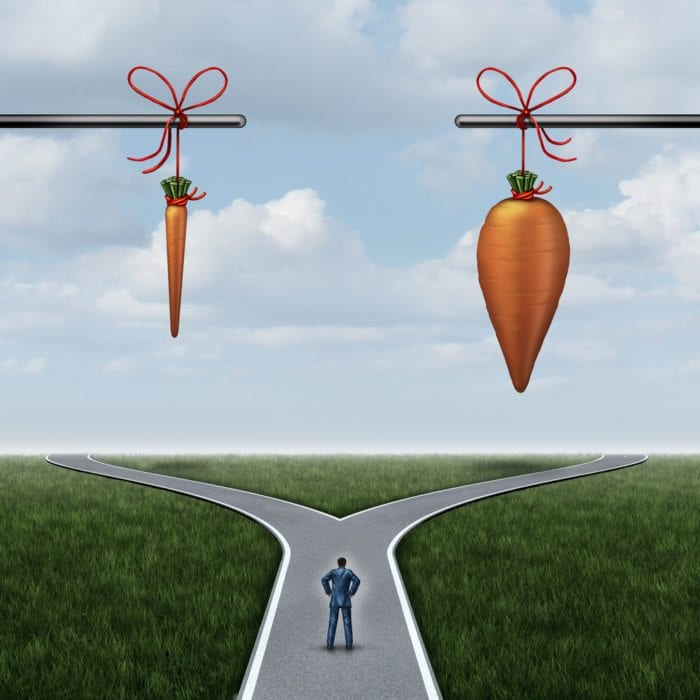 A road diverges into 2, and carrots